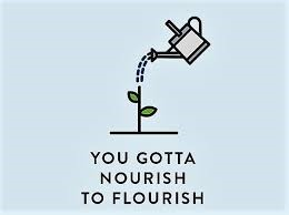 "A grey watering can watering a flower stem with 2 green petals on each side with the words, ""You gotta nourish to flourish,"" written underneath the image on a light blue background."